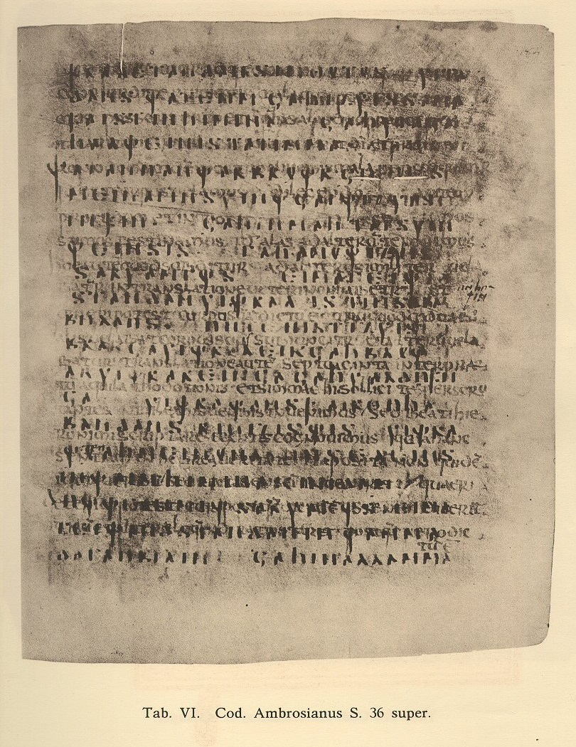 Codex Ambrosianus